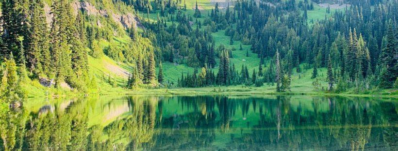 Sheep Lake this morning